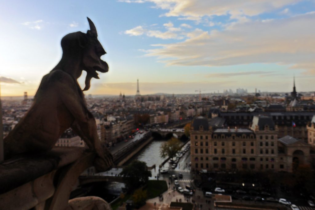 Gargoyle on Notre Dame cathedral in Paris, France