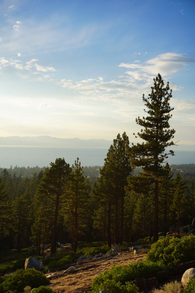 Spectacular view of Lake Tahoe from the Rim Connector Trail in Van Sickle Bi-State Park