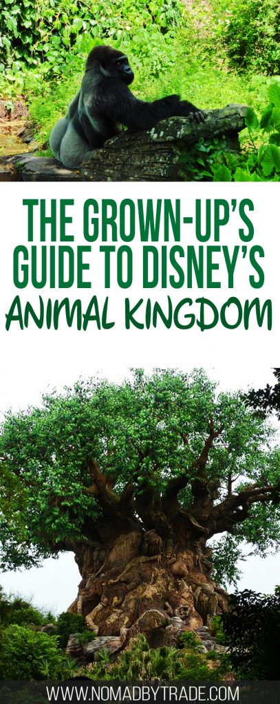 Disney World's Animal Kingdom Park is full of fantastic rides, animal encounters, and international inspired food. Adults will find plenty of ways to fill their day. Disney World | Disney parks | What to do at Animal Kingdom | Adults at Disney World