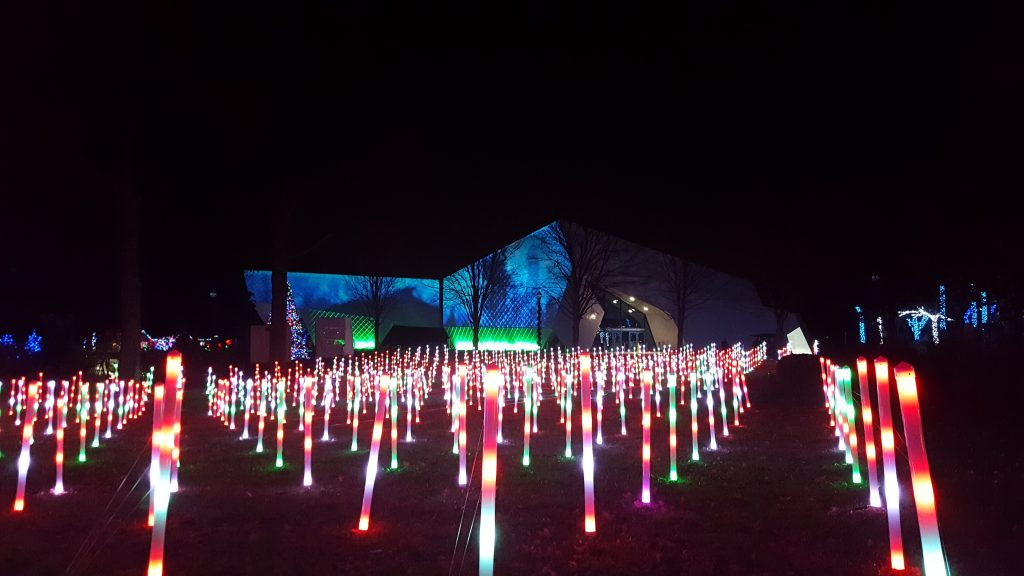 Wild Lights at the Detroit Zoo - Michigan in winter
