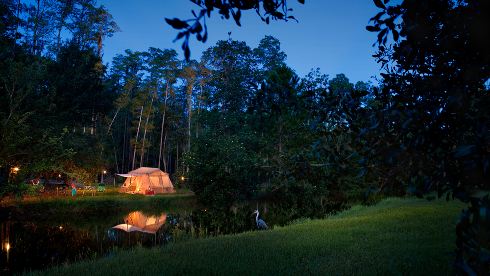 Camping at Disney World! A beautiful campsite at Fort Wilderness