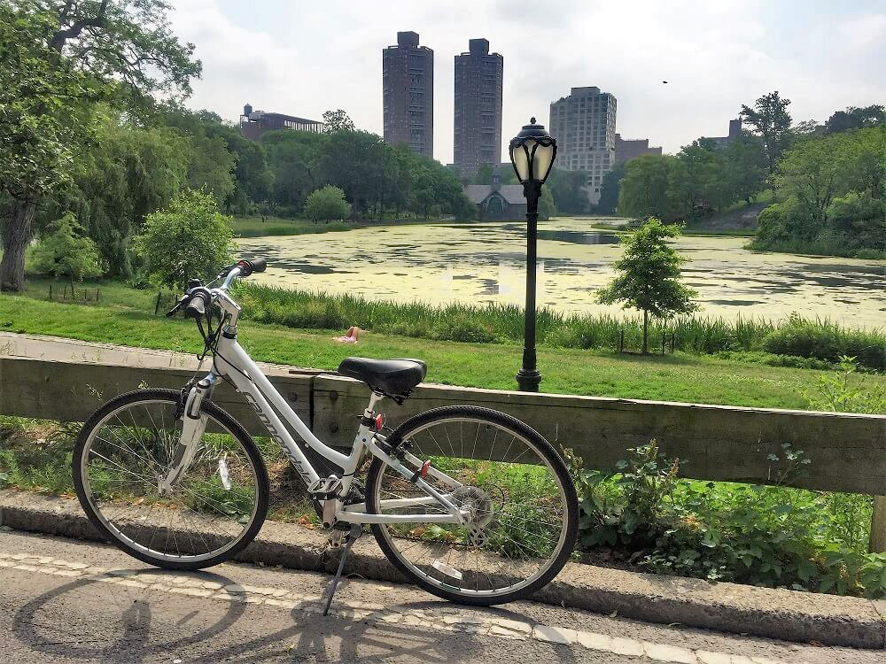 Bike parked along a pathway in Central Park