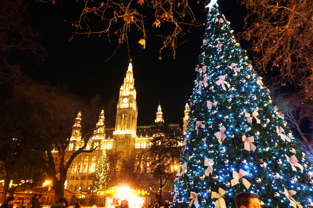Giant Christmas tree decorated and lit up in front of the Vienna Rathaus