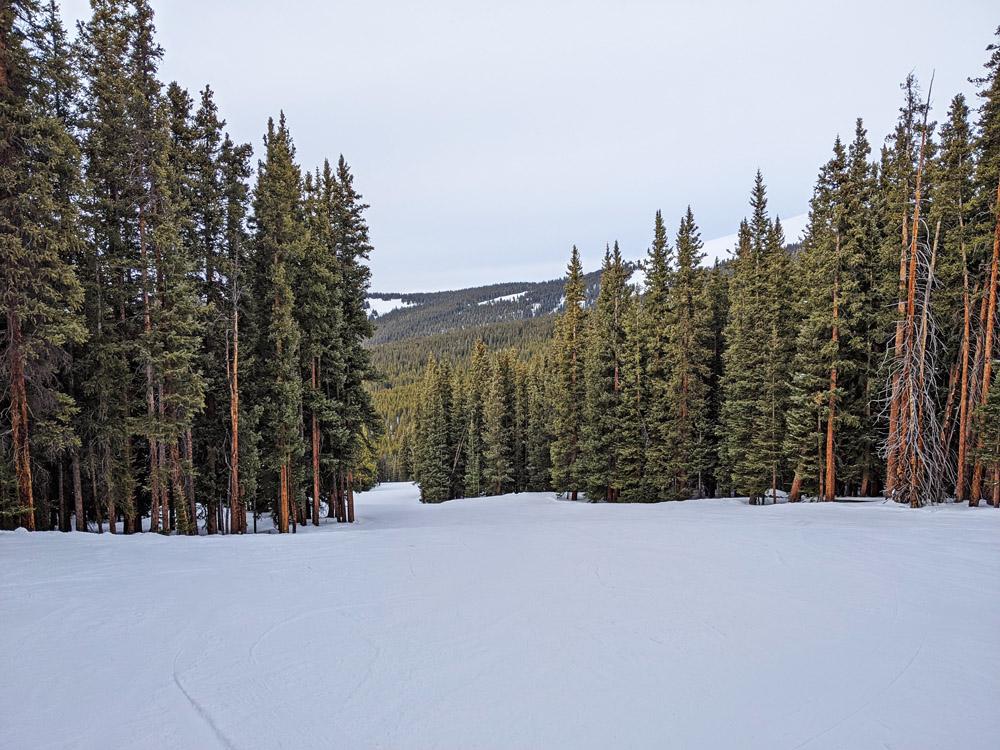 Easy green runs at Cooper Mountain