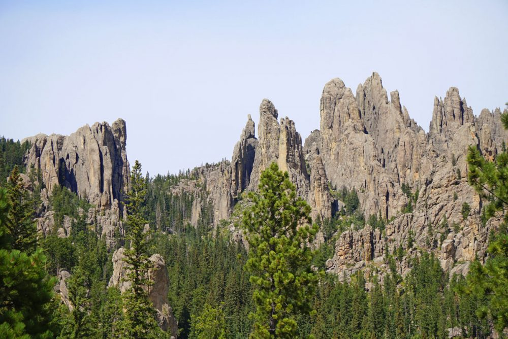 Rock spires along the Needles Highway in Custer State Park