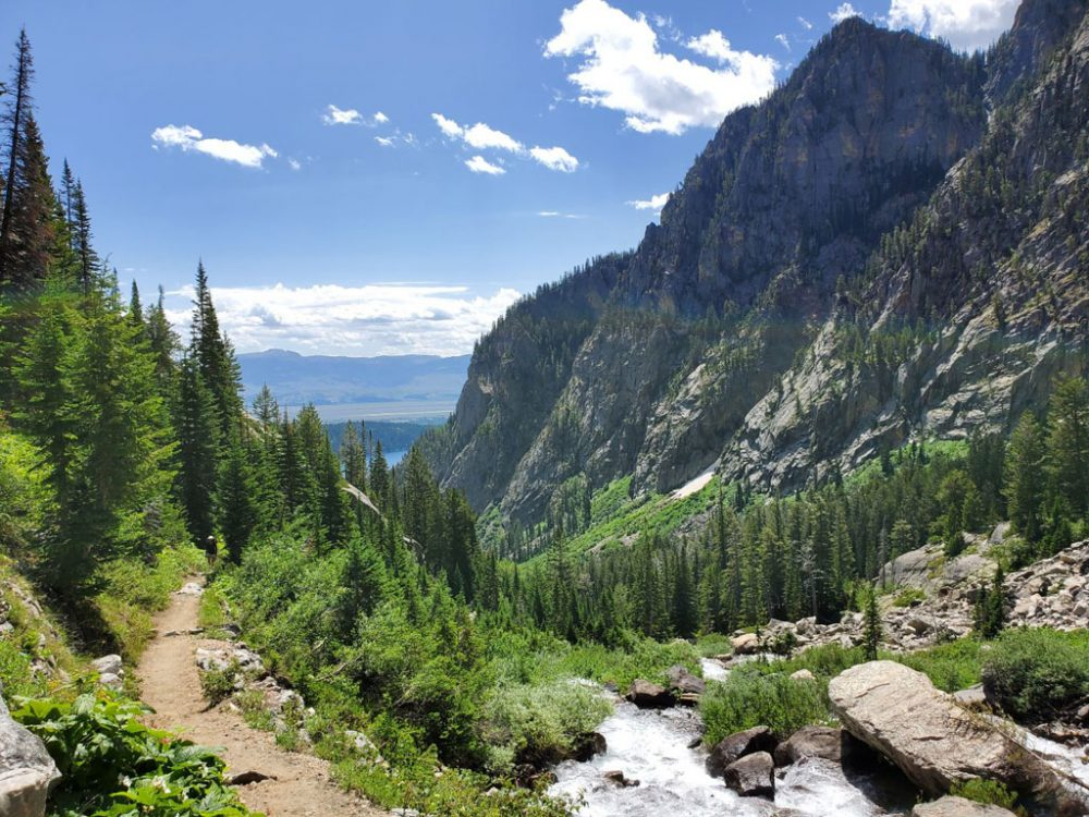 Photo of a green foliage-covered canyon between mountain peaks in Grand Teton National Park