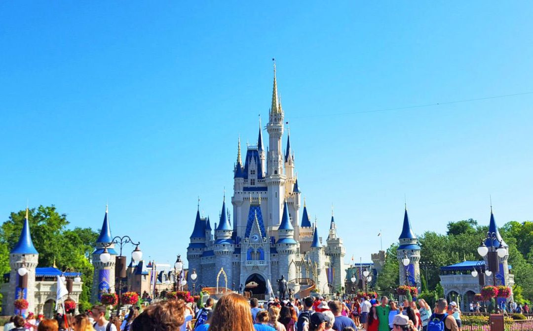 The Grown-Up's Guide to the Magic Kingdom for Adults