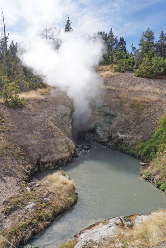 Steam pouring out of a cave opening over a pool of water at Yellowstone's Mud Volcano area
