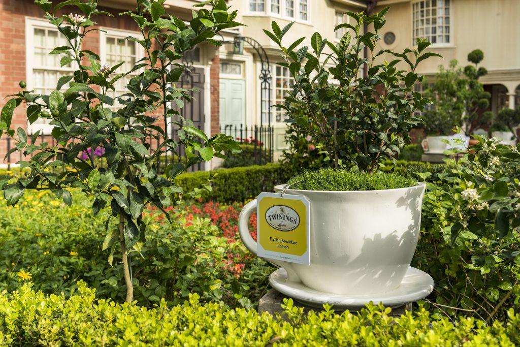 Royal Tea Garden tour at the UK Pavilion as part of Epcot's International Flower and Garden Festival