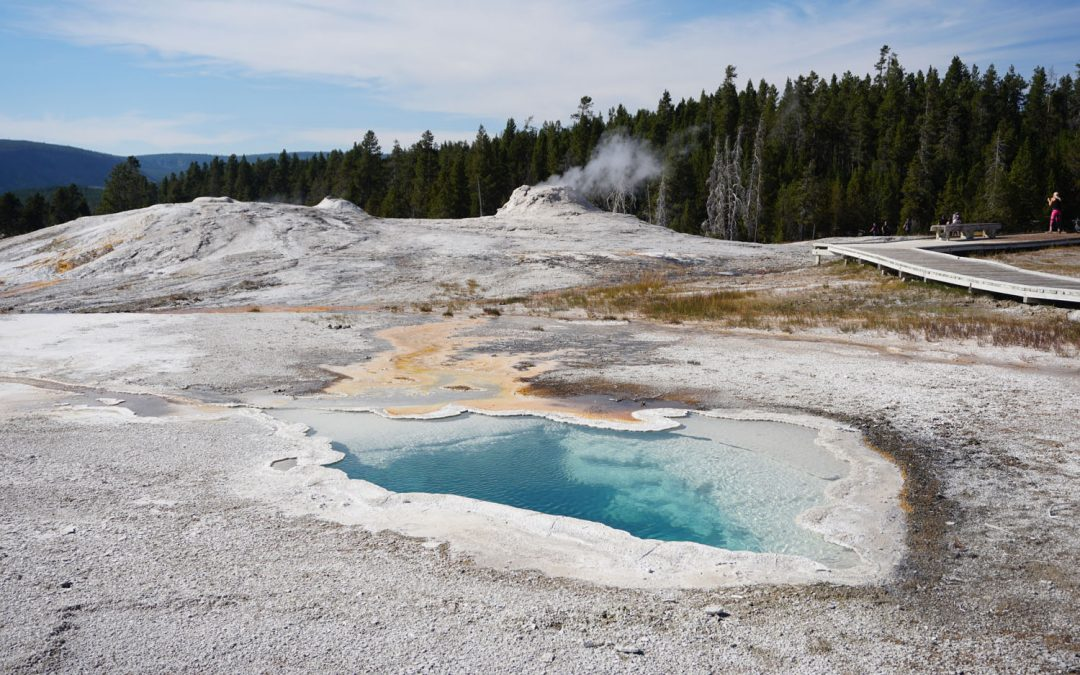 Small, bright blue hot spring with a chalky white sinter cone behind it in one of Yellowstone's geothermal areas