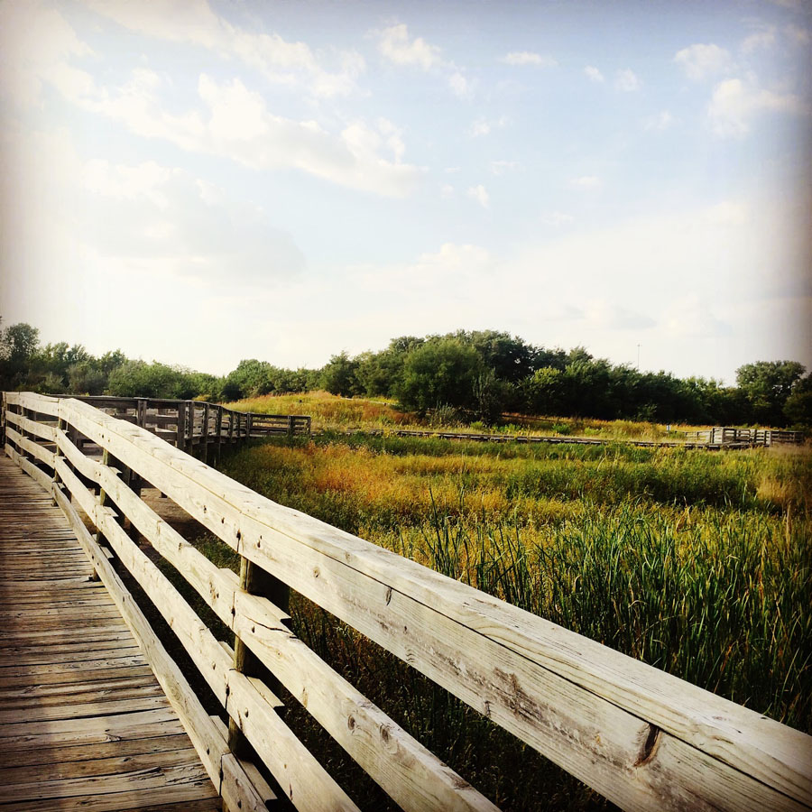 Boardwalk at the Great Plains Nature Center, one of the best things to do in Wichita, KS
