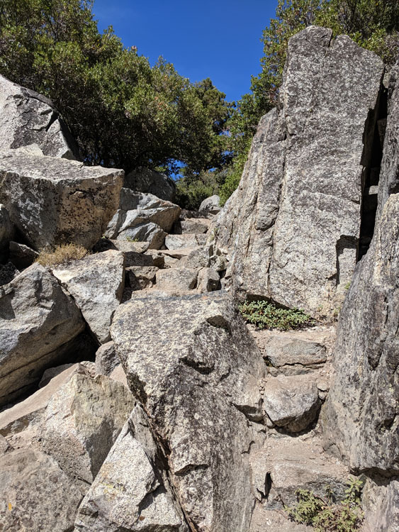 Rough cut pathway to the tea house on Fannette Island