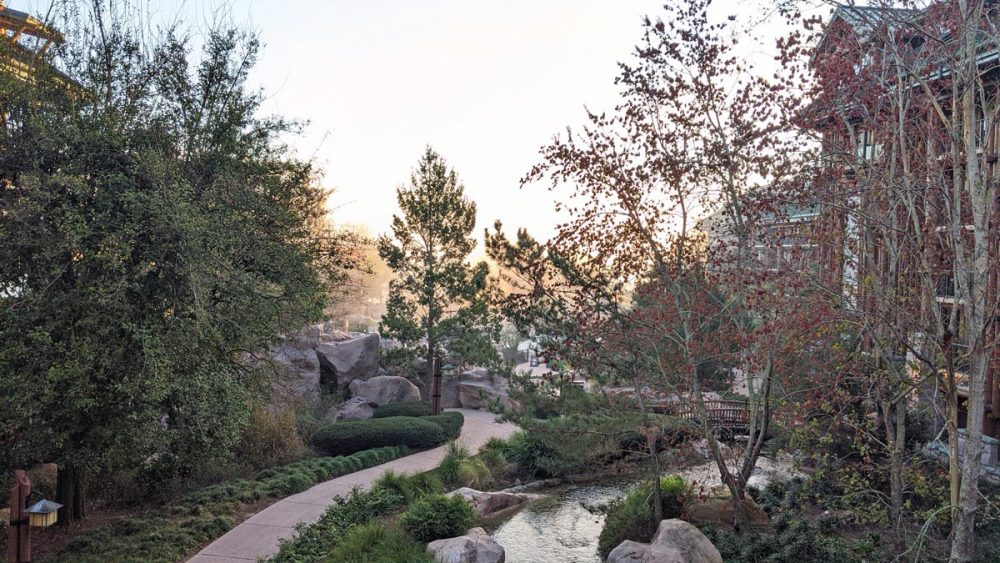 Pine trees and a winding artificial stream at Disney's Wilderness Lodge