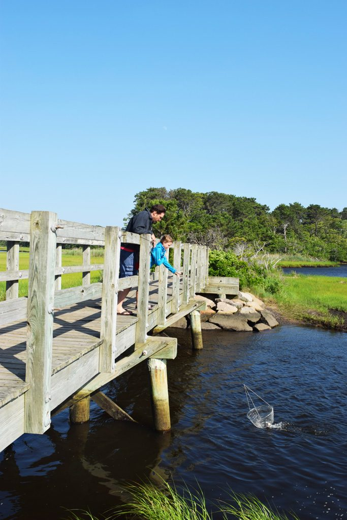 People crabbing from a bridge on Cape Cod