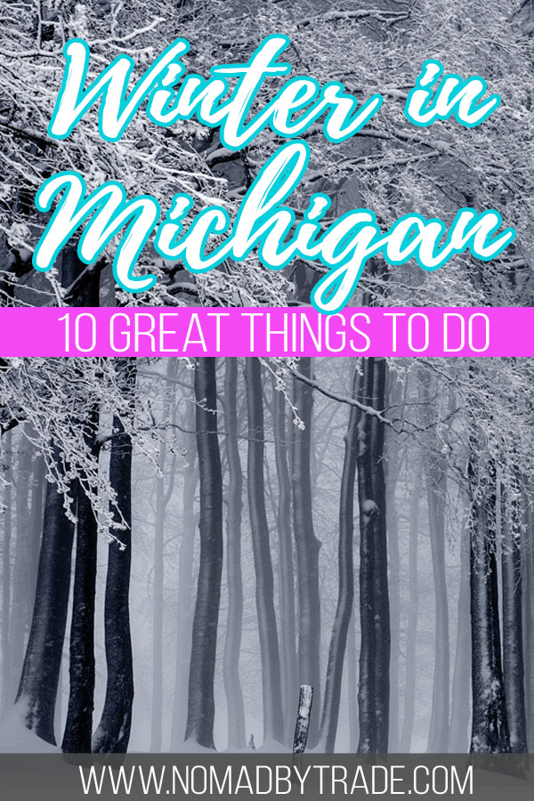 """Snowy forest with text overlay reading """"Winter in Michigan - 10 great things to do"""""""