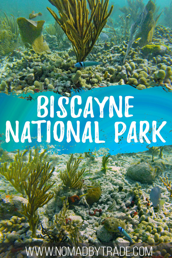 """Collage of coral and fish images with text overlay reading """"Biscayne National Park"""""""