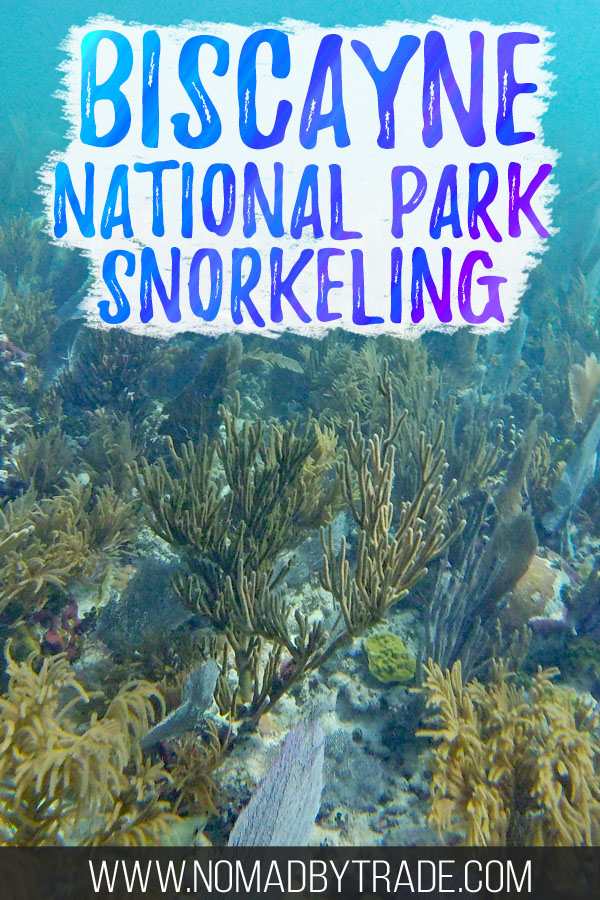 """Colorful coral reef with text overlay reading """"Biscayne National Park snorkeling"""""""