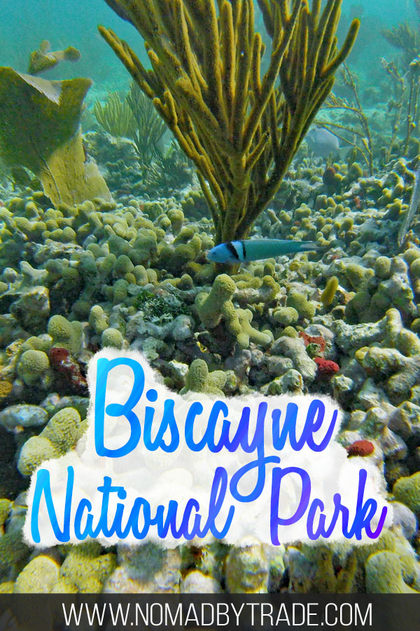 """Colorful fish and coral with text overlay reading """"Biscayne National Park"""""""