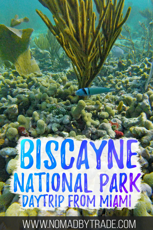 """Colorful fish and coral with text overlay reading """"Biscayne National Park daytrip from Miami"""""""