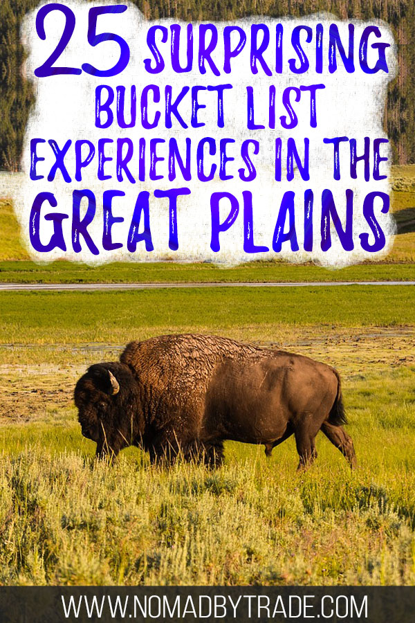 """Buffalo roaming in grass fields with text overlay reading """"25 surprising bucket list experiences in the Great Plains"""""""