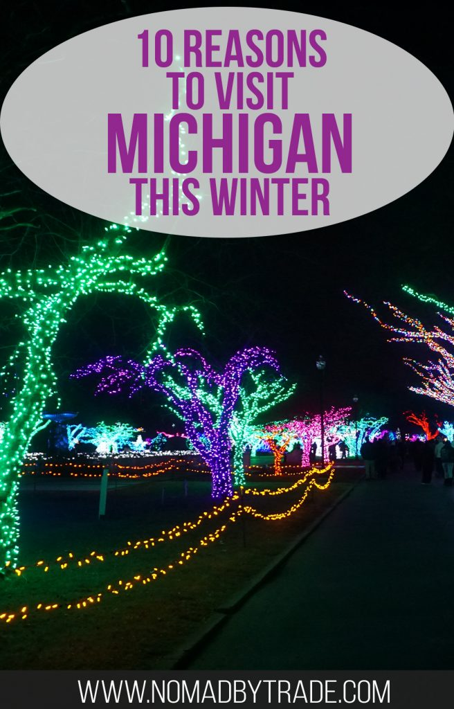 """Christmas lights at the Detroit Zoo with text overlay reading """"10 reasons to visit Michigan this winter"""""""