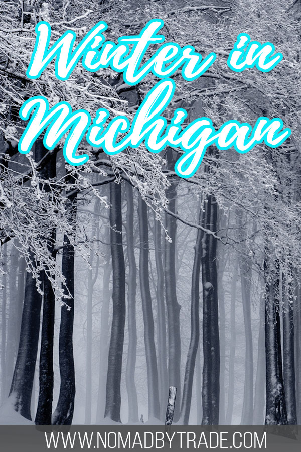 """Snowy forest with text overlay reading """"Winter in Michigan"""""""