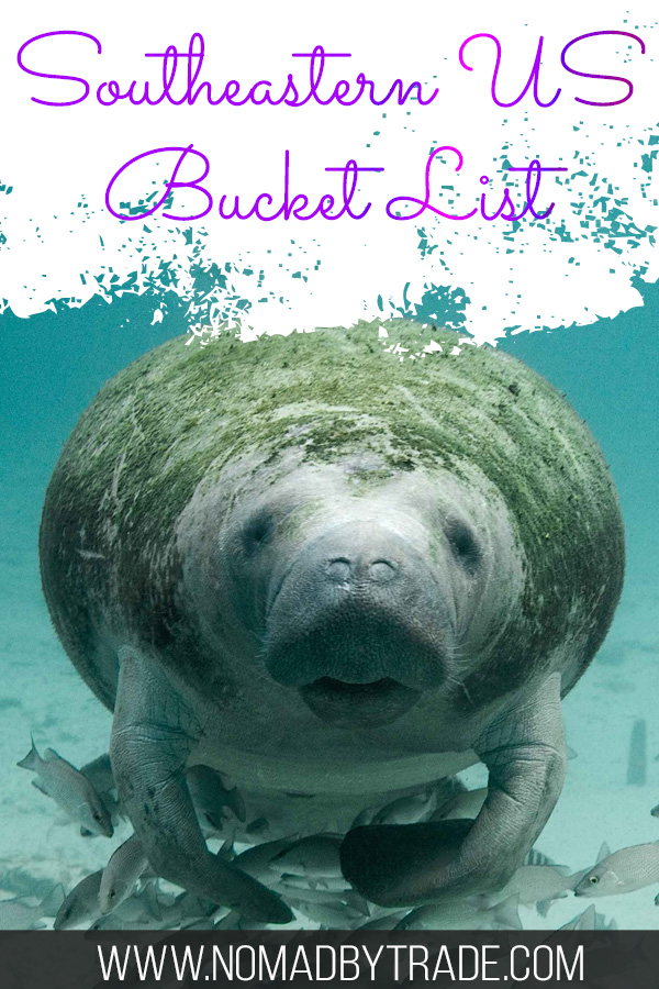"""Swimming manatee with text overlay reading """"Southeastern US Bucket List"""""""