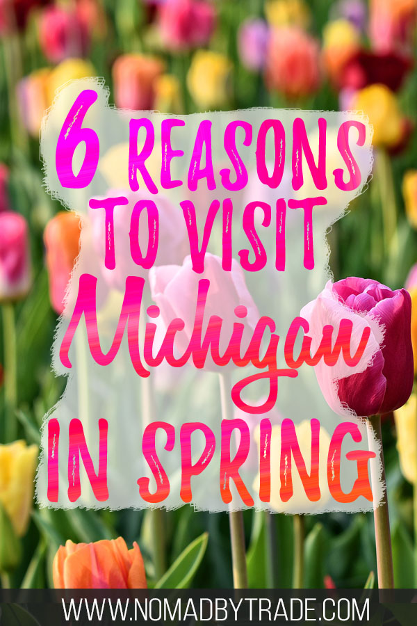 """Multi-colored tulips with text overlay reading """"6 reasons to visit Michigan in spring"""""""