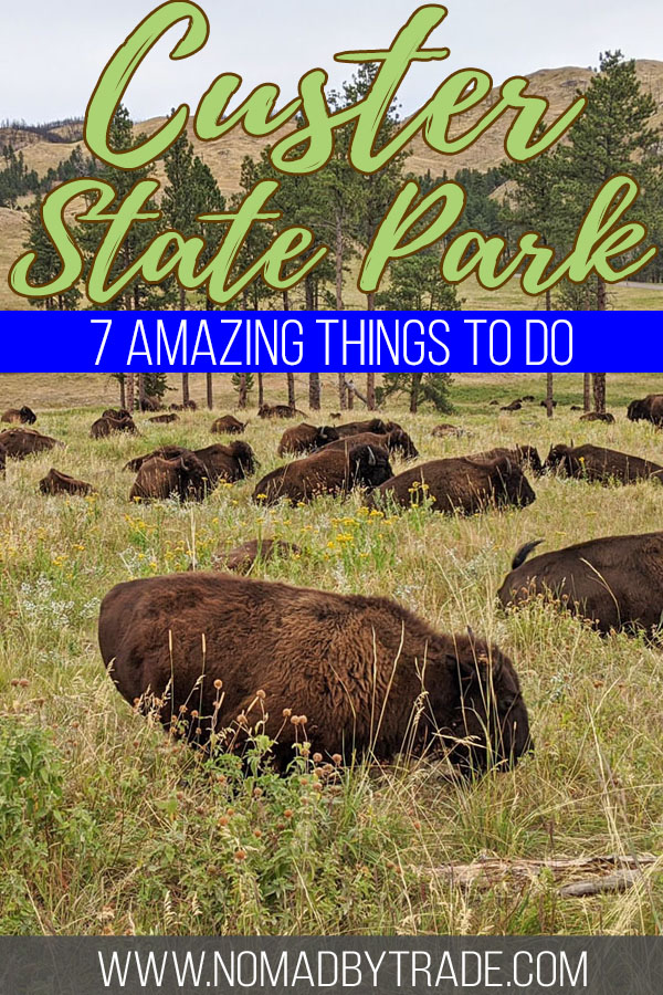 Herd of bison with text overlay reading