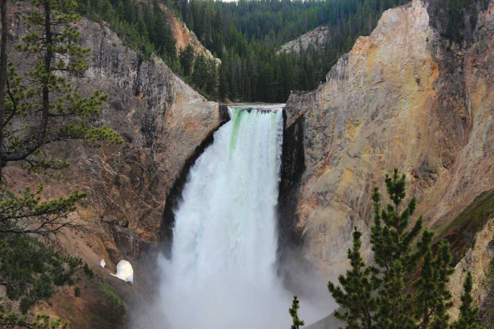 Photo of Lower Yellowstone Falls, a 300+ foot tall waterfall cascading into a deep canyon with yellow tinted walls
