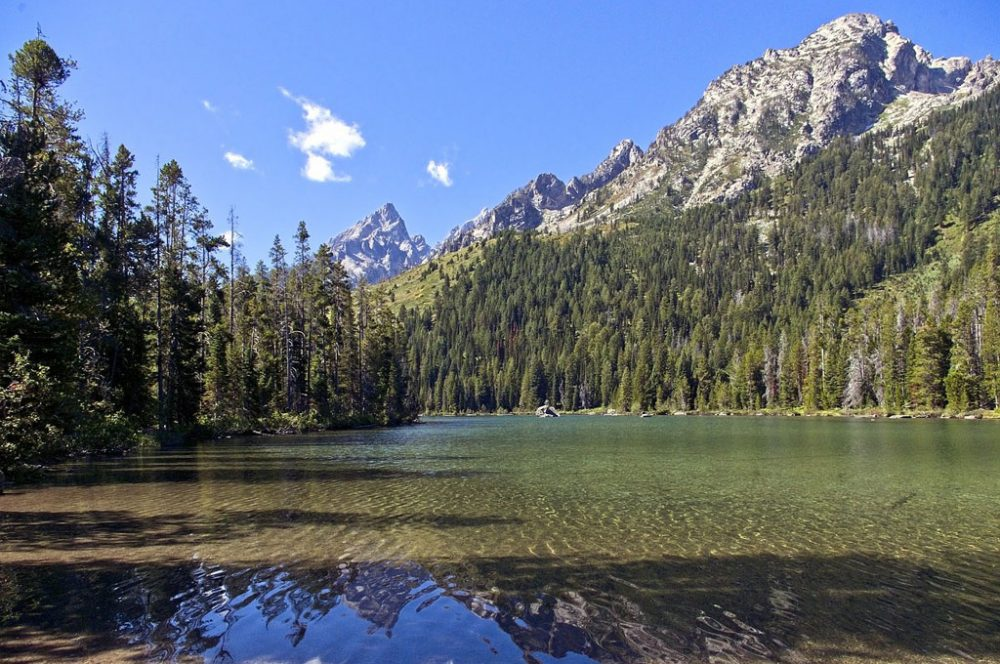 Photo of String Lake, a narrow mountain lake surrounded by evergreen forest, mountain peaks, and one of the most popular Grand Teton hikes