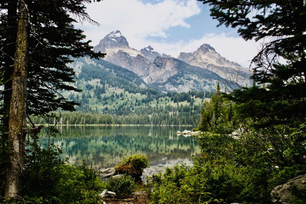 Photo of a green mountain lake framed by evergreen trees with mountain peaks in the background