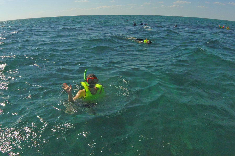 Woman wearing a snorkel in the water in Biscayne National Park