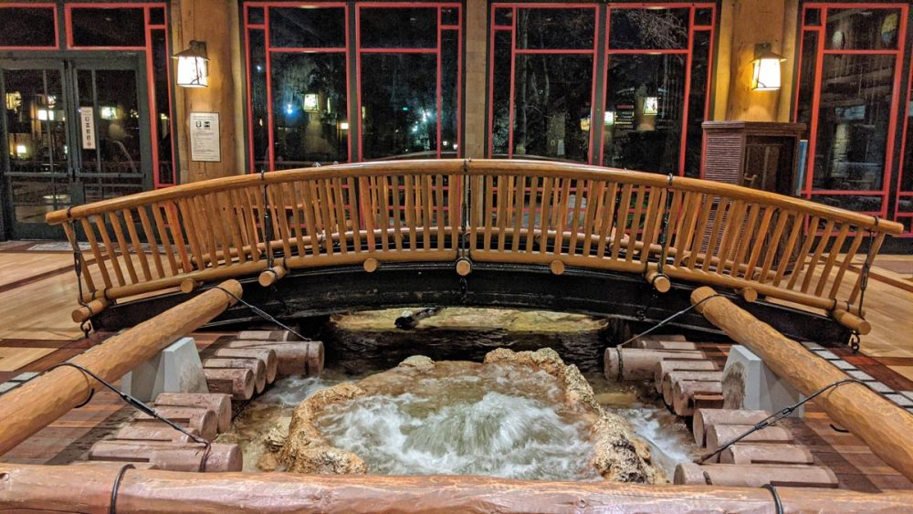 Bubbling hot spring in the Wilderness Lodge lobby