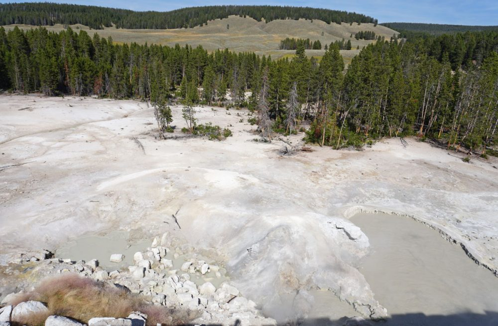 White deposits from an acidic spring